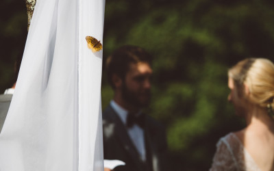 Backyard Bluegrass Wedding // Massachusetts